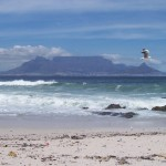 Table Mountain pic