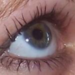 Eye - Cavelle